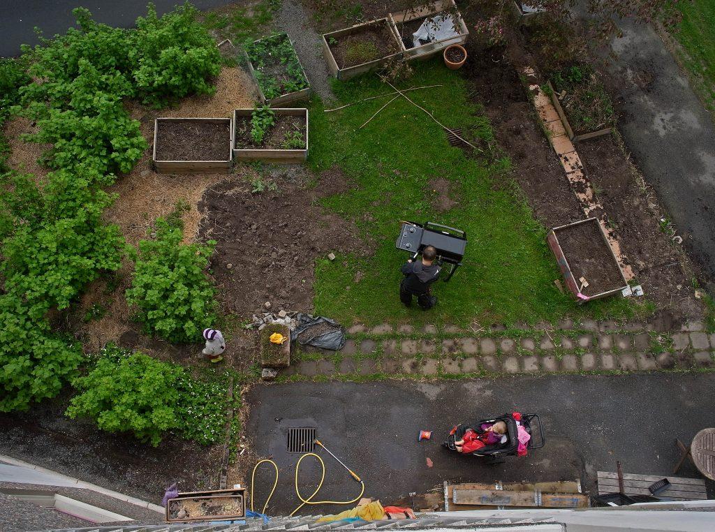 Odlingslådor och vinbärsbuskar